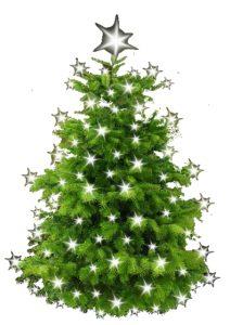 Weihnachtsbaum-leihen-Wie-teuer-ist-es-tatsaechlich